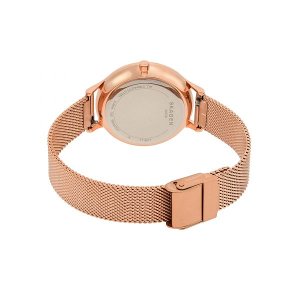 Anita Rose-Tone Steel Mesh Stone Watch